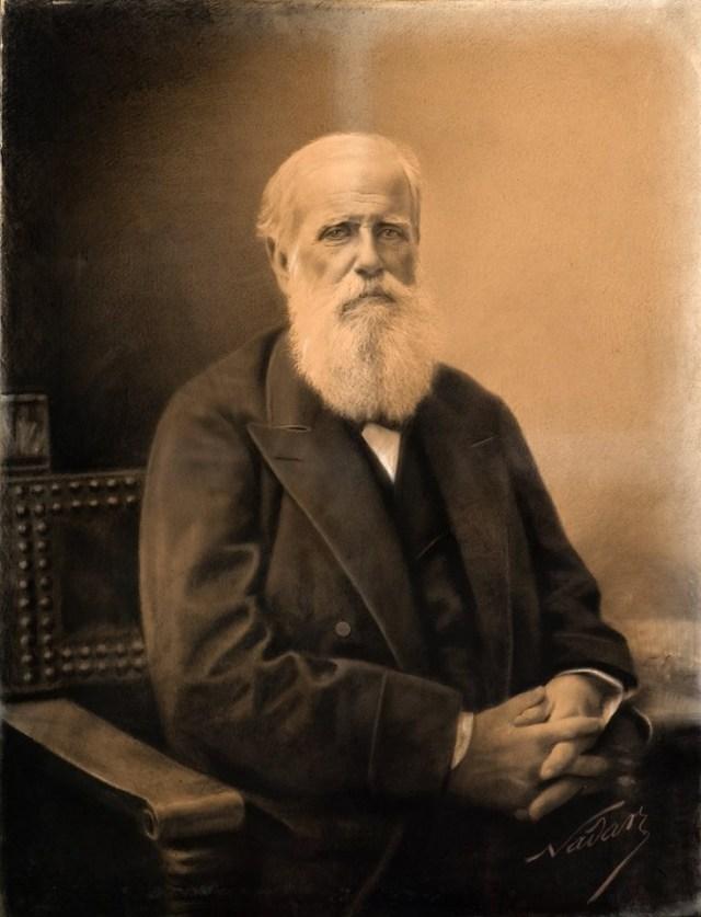 """Félix Tournachon """"Nadar"""". Retrato de D. Pedro de Alcântara. Fotopintura sobre cartão, 1,15 X 0,88m, c. 1891. Acervo do Museu Imperial /Ibram /MinC. Fotografia de Jaime Acioli."""